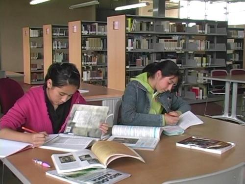 archivo-biblioteca-013